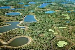 Hidrelétricas podem afetar sistema hidrológico do Pantanal