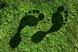 Pegada ecológica ajuda a registrar e controlar impacto do consumo