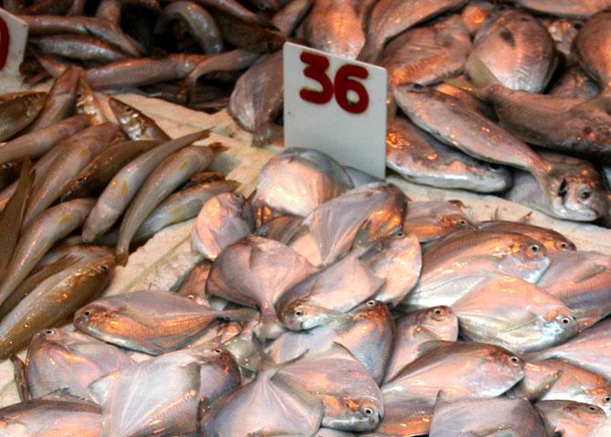 Peixes expostos num mercado em Hong Kong, China. Foto: Richard Allaway / Flickr