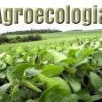 Um novo modelo de produção de alimentos, baseado na agroecologia, sem o uso de sementes transgênicas, agrotóxicos e fertilizantes químicos, em pequenas propriedades familiares, e a regulação do abastecimento e […]