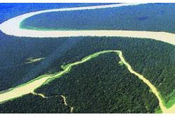 Abastecimento de energia advindos de Projetos Hidroelétricos depende da conservação de Florestas Tropicais