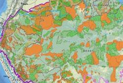 Pesquisadores avaliam impactos do desmatamento na Amazônia