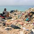 Enquanto em alguns países, como o Brasil, o problema está no excesso de lixo, na Noruega o problema é a escassez. De acordo com a Time, grande parte dos resíduos […]