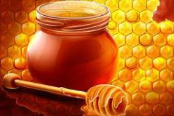 Alternativas que substituem o açúcar refinado
