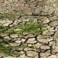 Nesta semana, mais uma pesquisa apresentada vem para reforçar a relação entre as mudanças climáticas e o aumento na frequência de eventos extremos. Desta vez, a análise publicada foi desenvolvida […]