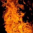 Grandes incêndios são frequentes no Cerrado – principalmente nos meses de inverno, quando os ventos fortes, a falta de chuva, a baixa umidade do ar e a massa vegetal seca […]