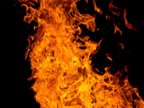Especialista defende manejo de fogo no Cerrado