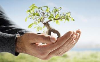 Qualidade e sustentabilidade