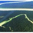 Em um tom de grande otimismo contestado por ONGs, o governo federal apresentou nesta quarta-feira (5), Dia Mundial do Meio Ambiente, dados oficiais que, apesar de reconhecerem o desmatamento de […]