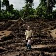 Temendo que a polícia avisasse os suspeitos, o promotor Francisco Berrospi não comunicou aos agentes locais que sairia para a floresta numa investigação sobre a extração ilegal de madeira. Mas […]