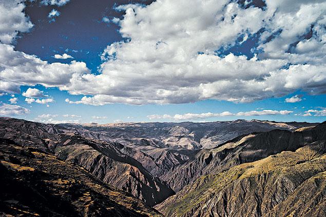 Ecossistema dos Andes tem a evolução mais rápida do planeta