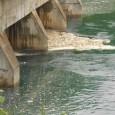 Rio de Janeiro – Técnicos do Instituto Estadual do Ambiente (Inea), fazem hoje (2) nova vistoria para descobrir a origem da espuma que se acumula nas praias da região entre […]