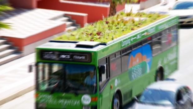 autobus_zoom