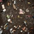 Restos de madeira, plásticos, tecidos antigos e resíduos não recicláveis vêm sendo utilizados na produção de biocombustíveis, no Canadá. Os responsáveis pela nova tecnologia são os cientistas da empresaEnerkem, que, […]