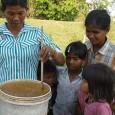 O procedimento de purificação da água é bem simples O produto já foi aprovado pela Organização Mundial da Saúde (OMS) e está sendo utilizado em um projeto piloto no Brasil […]