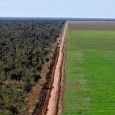 por WWF Brasil  Para que o Código Florestal se torne um mecanismo eficaz para a conservação e recuperação do passivo ambiental existente nas cerca de 5,2 milhões de propriedades […]