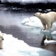 ECONOMIST.COM Cientistas atribuem mudança climática à atividade humana, principalmente, porque as pessoas foram responsáveis por grandes aumentos nas emissões de CO2, um dos principais fatores que influenciam o clima O […]