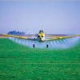 O Brasil é o maior consumidor de agrotóxicos do mundo. Como se isso não fosse o bastante, a fiscalização sobre o uso desses defensivos abrange uma quantidade muito pequena de […]