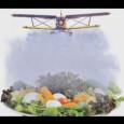 Paulo Virgilio, da Agência Brasil No país que mais consome agrotóxicos no mundo, há alternativas viáveis de produção de alimentos saudáveis que respeitam a natureza, os trabalhadores rurais e os […]