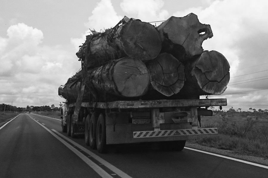 toraAcreCaminhão transporta árvores cortadas no interior do Acre. Foto: Daniel Santini