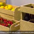 Embalagens biodegradáveis e autodesmontáveis para transporte de frutas, hortaliças e bebidas foram desenvolvidas por um grupo de alunos da Faculdade de Zooctenia e Engenharia de Alimentos (FZEA) da USP, […]