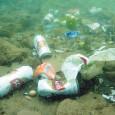 Ao menos 269 mil toneladas de detritos plásticos flutuam na superfície dos oceanos do mundo, estimou uma equipe internacional de pesquisadores em um estudo publicado nesta quarta-feira no periódico PLOS […]