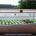O Cityblooms é um sistema ideal para a agricultura urbana. Com o tamanho aproximado de uma cama, o equipamento funciona como uma estufa tecnológica, que pode ser removida e transportada […]