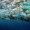 Você consegue imaginar a sua vida sem plástico? É praticamente impossível. Em nossa sociedade o plástico está em praticamente tudo, desde as embalagens de alimentos, sacolas, recipientes das mais diversas […]