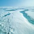 A extensão do gelo marítimo no Oceano Ártico atingiu um novo recorde mínimo para o período de inverno na região fortemente afetada pelas tendências a longo prazo do aquecimento global, […]