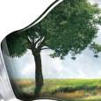 Aeconomia de baixo carbonoentrou no debate sobre a necessidade de proteção de recursos naturais como uma nova moda, capaz de aliar essa ideia de preservação com a manutenção da produtividade. […]