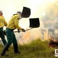 O Instituto Brasileiro do Meio Ambiente e dos Recursos Naturais Renováveis (Ibama) autorizou hoje (7) a contratação de brigadistas temporários para prevenção e combate aos incêndios florestais em vários municípios […]