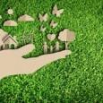 A sustentabilidade e suas metas construídas ao longo de décadas oferecem uma plataforma de conhecimentos que tem o potencial de alimentar 10 bilhões de pessoas eoferecer todos os benefícios de […]