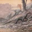 Há muitos anos os pesquisadores buscam entender como eram os parentes mais antigos dos dinossauros. Alguns acreditavam que eram como minidinossauros, do tamanho de uma galinha, e que também andavam […]