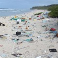 Uma ilha desabitada do Pacífico Sul é o local com a maior densidade de lixo plástico do mundo. A Ilha Henderson, parte do arquipélago de Pitcairn, um território do Reino […]