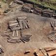 Um desmonte de quase 80 mil quilômetros quadrados – equivalente ao território de Portugal – em áreas protegidas federais no Pará, Amazonas e Santa Catarina é o que está prestes […]