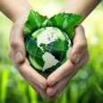 Desde a sua origem, em 24/05/2006, a Embrapa Agroenergia vem se dedicando a produzir soluções alinhadas ao Plano Nacional de Agroenergia, documento produzido no mesmo ano pelo Ministério da Agricultura, […]