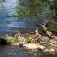 A degradação dos oceanos aumentou drasticamente nos últimos anos devidos ao impacto acumulado de atividades humanas como a poluição, a pesca excessiva e as emissões de gases nocivos, advertiu nesta […]