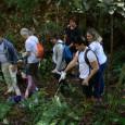 A ONU Meio Ambiente, agência das Nações Unidas que promove a conservação do meio ambiente e o desenvolvimento sustentável, encerrou hoje (11) as comemorações da Semana Mundial do Meio Ambiente […]