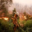 Mais de mil bombeiros seguem tentando conter ogigantesco incêndio florestal na região central de Portugal, que deixou pelo menos 62 mortos e provocou forte comoção no país. Após um fim […]