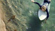 O resgate de uma tartaruga com um canudo de plástico atravessado em uma de suas narinas catapultou o item a símbolo da vilania contra os oceanos. A filmagem, feita em […]