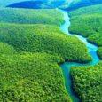 O Instituto Brasileiro do Meio Ambiente e dos Recursos Naturais Renováveis (Ibama) voltou a negar a licença ambiental necessária para que a multinacional Total E&P possa começar a perfurar os […]