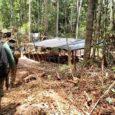 Ponte construída sobre rio Roosevelt feita para transportar madeira extraída ilegalmente da reserva foi implodida. Ninguém foi preso. Por G1 Rondônia A Polícia Federal (PF) deflagrou nesta semana aOperação Iratuscontra […]