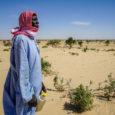 Relatório aponta que degradação do solo afeta pelo menos 3,2 bilhões de pessoas ou 40% da população mundial; FAO diz que manejo sustentável do solo é vital para se alcançar […]