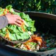 Estima-se que 931 milhões de toneladas de alimentos, ou 17% do total de alimentos disponíveis para os consumidores em 2019, foram para a cesta do lixo de domicílios, varejistas, restaurantes […]