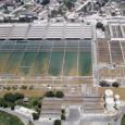 Além de não resolver o problema, a Estação de Tratamento do Guandu está mais uma vez parada, e a água agora está poluída com o metal pesado LANTÂNIO, que causa […]