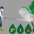 Relatório inédito feito por pesquisadores do Brasil, Portugal e Dinamarca afirma que modelo de produção agrícola deixou o Brasil mais exposto aos efeitos da pandemia por Pedro Grigori, Agência Pública/Repórter […]